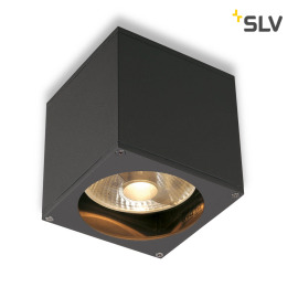 SLV BIG THEO WALL OUT wall light