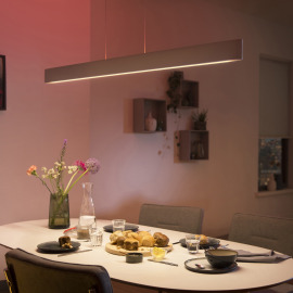 Philips Hue LED Luminaire Suspendu Ensis, White and Color Ambiance, blanc