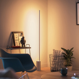 Philips Hue LED Lampadaire Signe, Aluminium, argenté, White and Color Ambiance